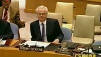 中俄否决安理会叙利亚问题决议草案 120205 广东新闻联播