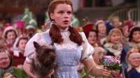 绿野仙踪(英语) The Wizard Of Oz 1939 1080p