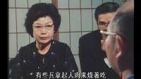 日本二战老兵回忆录