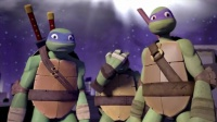 19 TURTLES IN TIME