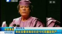 利比亚要求南非归还卡扎菲藏匿财产