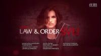 《法律与秩序:特殊受害者 第十五季》09集预告