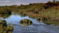 BBC 与恐龙同行(全六集) 01[英语高清]
