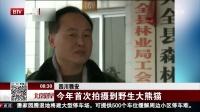 四川雅安:今年首次拍摄到野生大熊猫 北京您早 180201