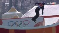 自由式滑雪男子坡面障碍技巧决赛 挪威选手:布拉滕获冠军