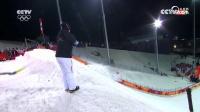 自由式滑雪男子空中技巧决赛第一轮刘忠庆晋级