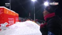 自由式滑雪男子空中技巧决赛第二轮贾宗洋