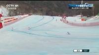 高山滑雪女子速降决赛 意大利格志亚夺冠