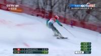 高山滑雪男子回转决赛 瑞典选手最终夺冠