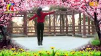 杨丽萍广场舞 人生难得一知己 背面