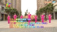 杨丽萍广场舞《溜溜的情歌》欢快风格