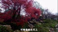 tsh视频田-贵州贵阳山歌-新打镰刀口又宽