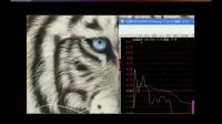股票入门教程 大盘分析 股票K线技术分析 股票入门教程 (5)