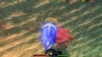 海底大猎杀 小篮鱼大战大螃蟹这个头也太大了吧