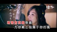 王心凌+伍嘉成-境迁[1080P](韵影KTV制作)