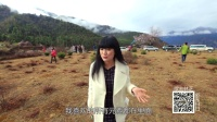 西藏林芝(二)美哭!揭秘一天呈现四季的绝美村落!