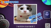 看完这7分钟视频 保你春节安全回家!
