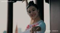 单色舞蹈中国舞导师黄文瑾个人视频《流光飞舞》