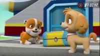 《汪汪队立大功》狗狗们出去旅行,箱子里装的全是饼干