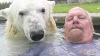 想不想和北极熊一起在水里玩耍