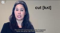 专业英语听力-30天词汇提高-Day4-Cut-Part2
