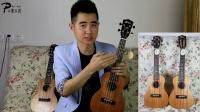 【张sir知音堂】31:米卡Mica CM10 VS CM20 ukulele 尤克里里音色试听对比