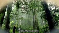 来自风景秀丽的石台县山村里的生命源水
