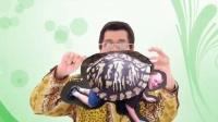 【PPAP&蓝瘦香菇】全国方言大乱斗(北京、天津、河南、东北、南宁)