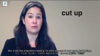 专业英语听力-30天词汇提高-Day3-Cut-Part1
