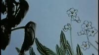 水墨动画:小蝌蚪找妈妈