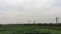 【2017.8.12】上局沪段SS80040牵引K1373/K1376次通过沪昆线K116km槜李路公铁立交