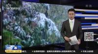 冷空气来势汹汹,新疆多地遭遇大风降雪降温 新闻夜线 181018