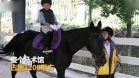 杭州一小学建室内马术馆 不出校门就能骑马