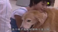 忠犬护主不料却被毒害 女主人抱爱犬痛哭人犬情深画面感人