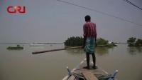 印度洪灾死亡人数已超过150人 国际时政 20190721