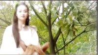 古装女子群像MV《歌尽桃花》(非小说)by清风扬弦