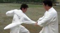 张九华太极推讲解手系列之(一)