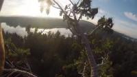 狂人徒手爬上参天大树 登顶自拍诠释运动快乐