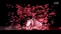 【霹雳布袋戏MV】日居月诸·绮罗光阴