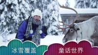 芬兰童话世界和驯鹿亲密接触