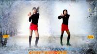 2017最新广场舞《爱情里下了一场雪》阿采广场舞 有教学