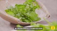 美食台 | 新鲜蔬菜煲老火汤,广东人厉害!