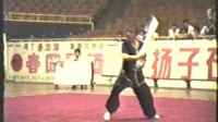 1995年全国武术套路锦标赛 女子传统项目 单器械 009 南刀 李英(北京)