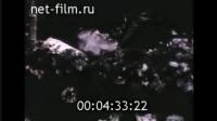 1946年亚历山大•亚历山德罗夫的葬礼