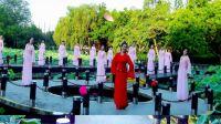 荷花颂【团队】古典舞 形体舞 曾惠林舞蹈系列
