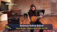 Tom Anderson Hollow Bobcat 试听测评