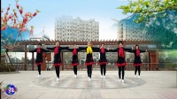 好心情蓝蓝广场舞原创团队版入门单人水兵舞【48步万树繁花正背面】附教学