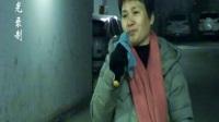 紫光录制·王月华-西湖畔一场梦