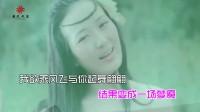 海鸥飞—龙梅子KTV