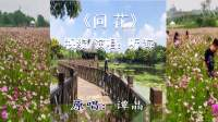 《问花》(听海演唱MV)